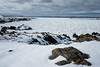 Sea of Ice (Aymeric Gouin) Tags: canada newfoundland terreneuve ice sea mer ocean glace neige snow winter hiver nature landscape paisaje landschaft paysage travel voyage wild outdoors adventure fujifilm xt2 aymgo aymericgouin