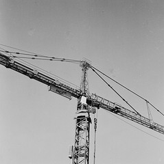 Crane (rotabaga) Tags: sweden sverige svartvitt göteborg gothenburg lomo lomography lubitel166 mediumformat mellanformat fomapan r09 120 6x6 twinlens
