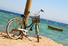 Bicycle on beach (alena.alekseeva.rudenko) Tags: beach sea bicycle coastline travel horizontal scenics transportation waters exercise summer blue vacations sky lifestyles water relaxation day destinations beachcruiser dating stationary outdoors sports image vacation sport leisure activity recreational flower bike retro cycling scene nonurban nature