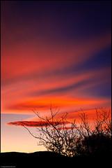 Blue and Vermillion (niggyl (well behind)) Tags: sun sunset cloudsstormssunsetssunrises cloudporn cloudformations cloudscape cirrus altocirrus waveformcloud bluehour blue leicam240mp leica m240mp m240 contax contaxzeiss contaxg452planar zeiss zeisslens mmount leicammount frankenzeiss cinnabar vermillion scarlet carlzeisst g452