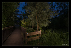 painted with light (Dierk Topp) Tags: a7rii a7rm2 ilce7rii ilce7rm2 sonya7rii landscapes night paintedwithlight reinfeld sony sonyfe2470f4zaoss trees