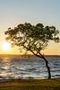 Sun set on Lake Ogawara. 2018-05-20 # 1 (KTK's) Tags: 三沢市 青森県 日本 jp