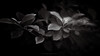 (Elton Pelser) Tags: bnw blackandwhite monochrome mono greyscale lowkey noir leaves nature outdoor