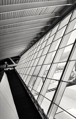 Líneas (robertrutxu) Tags: bilbao aeropuerto lineas blancoynegro ventanas embarque vuelo avión rampa
