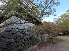 Castle east _orig_LG (Hazbones) Tags: iwakuni yamaguchi yokoyama castle kikkawa suo chugoku mori honmaru ninomaru demaru wall armor samurai spear teppo gun matchlock map ropeway