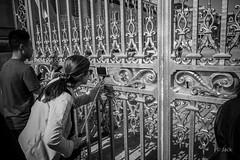 en passant par Versailles (Jack_from_Paris) Tags: l1011810bw leica m type 240 10770 leicaelmaritm28mmf28asph 11606 dng mode lightroom capture nx2 rangefinder télémétrique bw noiretblanc noir et blanc monochrom wide angle street château de versailles visite attente queue waiting portrait soleil foule grille photographes personnes canne à selfie au travers