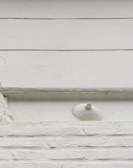 Le téton d'ivoire (misterblue66) Tags: teton sein tits sexualtown blanc white a6000 sony uccle