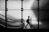Silhouette @ Metrostation A'dam Centraal (PaulHoo) Tags: amsterdam city urban nikon d750 2018 blackandwhite contrast window square silhouette centraal station subway elevator staircase candid streetphotography