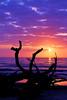 LCS Framed (Montwerx) Tags: lowcountrysunsets lowcountrysunsetsonfacebook mdggraphix jekyllisland sunset sunrise goldenhour myskies driftwood driftwoodbeach