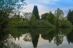 Reflections on Bishops Waltham South Pond (Meon Valley Photos.) Tags: reflections bishops waltham south pond abbey ruins