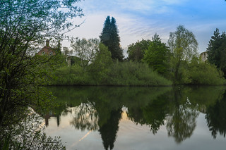 Reflections on Bishops Waltham South Pond