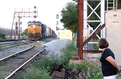 Watching (clarkfred33) Tags: csx csxaction railroadscene railroadsignal railroadhistory aclhistory lakeland cantilever railroadadventure railroadphotography vintagesignal telephoto telephotoview