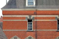 Cockroach (jgurbisz) Tags: jgurbisz vacantnewjerseycom abandoned nj newjersey ny newyork hudsonriverstatehospital asylum kirkbride fire decay centralia hospital