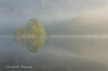 Echoes Of Spring (jeanette_lea) Tags: landscape dawn sunrise rydal water the lake district cumbria united kingdom boathouse trees mist reflections light