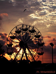 Deserted Carousel with flying seagull at sunset. _  Ph. White Angel (Angel & Jacob) Tags: whiteangel sunset tramonto lunapark carousel giostra ride photo photography fotografia foto picture cloudy clouds nuvole nuvola nuvoloso sky cielo ruota bird seagull conceptualimage conceptphotos yourbestoftoday