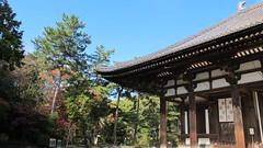 #Nara #garden #japan #temple #Tang Zhaoti Temple #Todai-ji Temple #Five-story tower #canon Powershot G12 #sky #red leaves (days77) Tags: nara red japan five canon sky tang todai temple garden