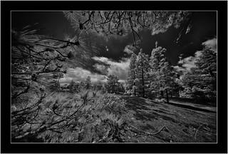 La Palma, Sony A7R IR with Voightländer Heliar Hyper Wide 10mm/5.6