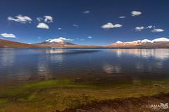 Lago Chungará (alainmacias) Tags: paisajes canoneos7dmkii chile landscape regióndearicayparinacota lago 2018 lagochungará tokina1224f4atxproifdxii lake parquenacionallauca arica marumidhgsupercircularpolarizer putre cl