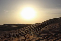 148 (Thaís Letícia Olivo) Tags: sand areia paisagem landscape céu sky sunset pordosol pôrdosol sun light sunlight uae eau abudhabi deserto desert