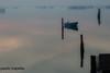 Scardovari (paolotrapella) Tags: scardovari valle boat barca water acqua
