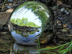 Ditch Ball (clarkcg photography) Tags: orb reflecting ball globe sphere ditch gutter water plants fauna reflection faunareflections cof023 cof023uki cof023mkc gorgeousgreenthursday cof023suea cof023dmnq