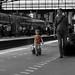 le petit aventurier - the little adventurer