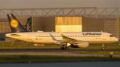 Airbus A320-214(WL) D-AIUA Lufthansa (William Musculus) Tags: airport spotting frankfurt am main fraport flughafen eddf fra frankfurtmain daiua lufthansa airbus a320214wl a320200 william musculus