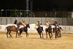 Hyderabad Polo Season @HPRC (Captured by Bachi) Tags: uspa uspolo sports equestrain life love horse horses polosport game polo