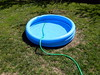 The pool is filled with water (architectphd) Tags: pool swimming water filling hose fill summer clean outdoor sunny plastic child blue flowing green flow background closeup white vacuum sprinkler kiddie fun kid wet