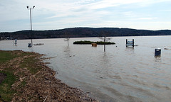 0008925 (Shakies Buddy) Tags: flood flooding water brundage point river centre saint john nbphotonbcanada all rights reversed saintjohnriver brundagepointrivercentre grandbaywestfield ©allrightsreserved