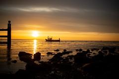 Zonsopkomst/ Sunrise (the_cyberspace) Tags: zonsopkomst sunrise water zee sea zon sun yerseke d800 nikon