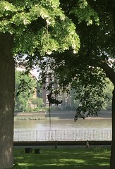 Tree surgeon abseiling up into a tree. (maggie jones.) Tags: path riverthames green trees london