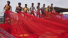 Fishermen Pulling Net (Sharpshooter Alex) Tags: indian fishermen men male net red culture asia travel india