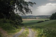 The journey is the reward (Netsrak) Tags: dunst eifel europa europe landschaft maar natur schalkenmehren haze landscape nature