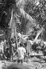 kalitami687 (Vonkenna) Tags: indonesia kalitami 1970s seismicexploration