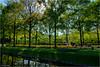 Lane (Hindrik S) Tags: lane leane loane laan trees beammen bomen bäume reflection reflectie refleksje backlight tsjinljocht tegenlicht keukenhof lisse 2018 green grien groen grün vert verde jardin garden garten tún park tuin sony1650mmf28dtssm sonyalpha sony sonyphotographing sal1650 zuidholland netherlands nederland