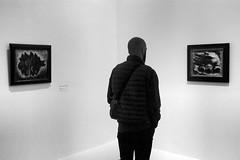 Regards — Afchine Davoudi, musée d'Art moderne, Paris, 26 avril 2018 (Stéphane Bily) Tags: stéphanebily afchinedavoudi musée museum muséedartmoderne muséedartmodernedelavilledeparis fautrier jeanfautrier visiteur visitor noiretblanc blackandwhite bw nb
