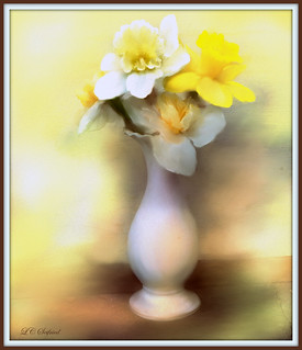 White vase with daffodils [darker version]