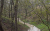 Openlands (urbsinhorto1837) Tags: ftsheridan landscape light nauture northshore openlands outdoors overcast preserve ravine spring trees water