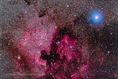 North America Nebula with Deneb (Amazing Sky Photography) Tags: cygnus deneb emissionnebula ic5067 meade70mm ngc7000 northamericanebula pelicannebula starshrink astrograph bluestar