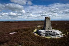 Sandy Hill Trig Point (andyjgordon_) Tags: trigpoint sandyhill yorkshiredales 7714 landscape heather sky tp5812