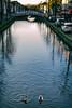 Een dagje Delft (Merlijn Hoek) Tags: delft delftenaar delvenaar verjaardagscadeau oppad eend duck eenden eendjes ducks water gracht