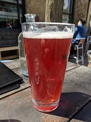 mmmm....beer (jmaxtours) Tags: mmmmbeer bigtikiblondeale hopcitybrewingco hopcity hopcitybrewing bigtiki ale blondeale brampton bramptonontario beer