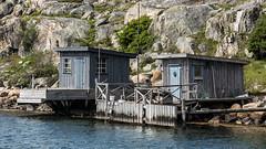 Rivo (tonyguest) Tags: wood shack stugor water rustic rocks archipelago göteborg gothenburg skärgård rivo sweden tonyguest tree jetty fishing