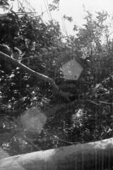 kalitami688 (Vonkenna) Tags: indonesia kalitami 1970s seismicexploration