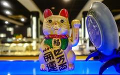 maneki-neko and Happy Birthday to me (29 APRIL) (YᗩSᗰIᘉᗴ HᗴᘉS +15 000 000 thx) Tags: manekineko cat chat chatportebonheur chine chinois leica q leicaq 7dwf fauna