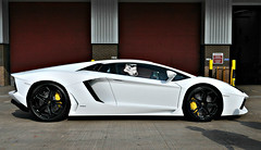May the 4th ? (PentlandPirate of the North) Tags: starwars maythefourth maytheforcebewithyou stormtrooper lamborghini aventador manchesterairport maythe4th