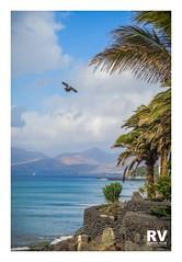 Puerto del Carmen - G16 2018-3038b (ROBERTO VILLAR -PHOTOGRAPHY-) Tags: photografikarv lzphotografika lanzarotephotográfika imagenesdelanzarote fotosdelanzarote playa islascanarias mejorconunafoto photobank