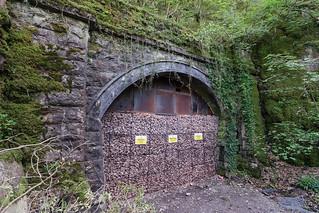 Walnut Tree Tunnel North Portal, May 2018