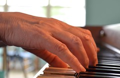 Piano Hands (linda_lou2) Tags: 52weeksof2018 week19 themehands categorytechnique hands piano